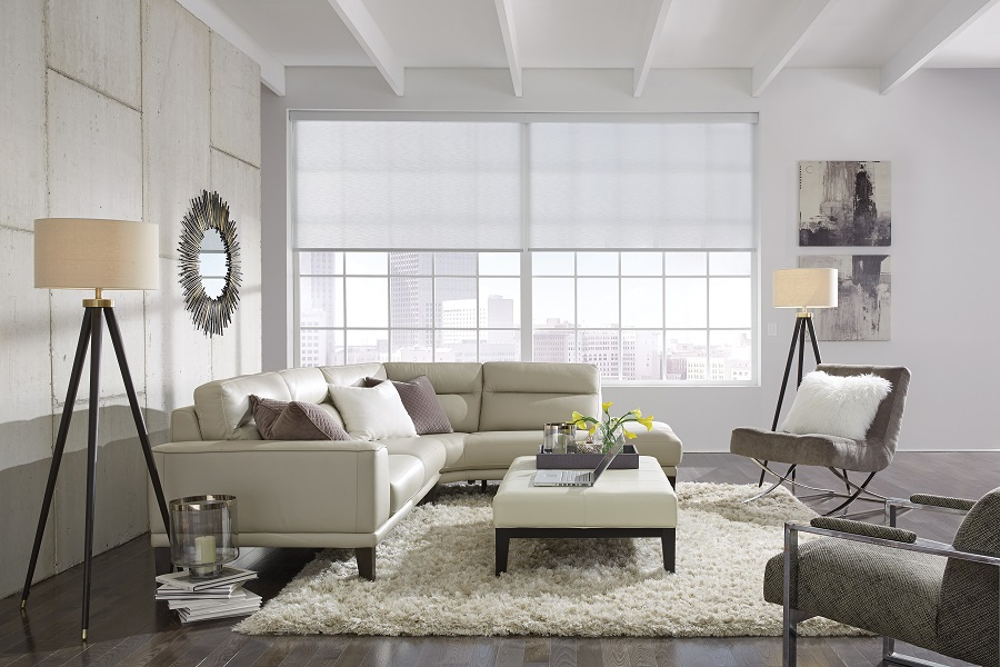 REDUCE ENERGY COSTS AND ENHANCE ANY ROOM WITH AUTOMATED SHADES